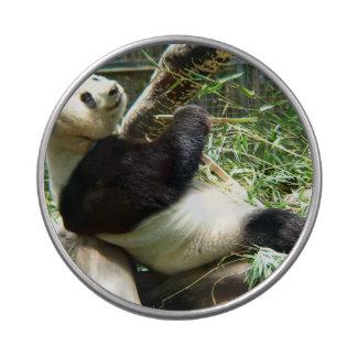 Oso de panda jarrones de caramelos