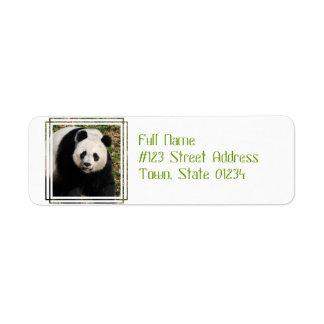 Oso de panda lindo etiquetas de remite
