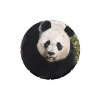 Oso de panda lindo jarrones de dulces