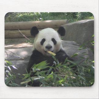 Oso de panda Mousepad Tapetes De Ratones