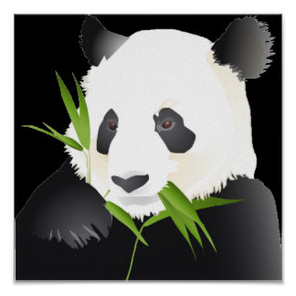 Oso de panda impresiones