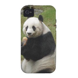 Oso de panda que come algún bambú iPhone 4/4S funda