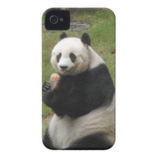 Oso de panda que come algún bambú Case-Mate iPhone 4 cobertura