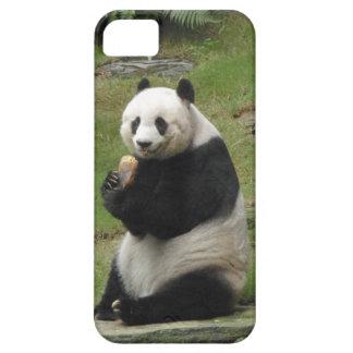 Oso de panda que come algún bambú iPhone 5 cárcasas