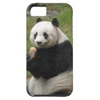 Oso de panda que come algún bambú iPhone 5 cobertura