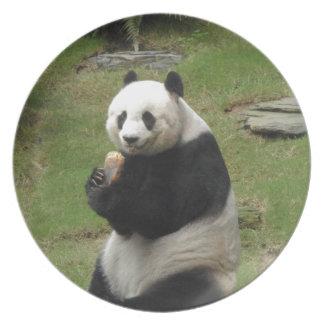 Oso de panda que come algún bambú plato de cena