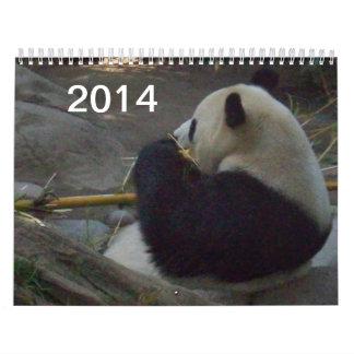 Oso de panda que come el calendario de bambú