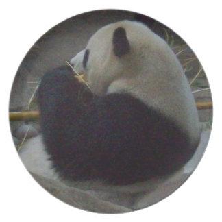 Oso de panda que come la placa de bambú platos para fiestas