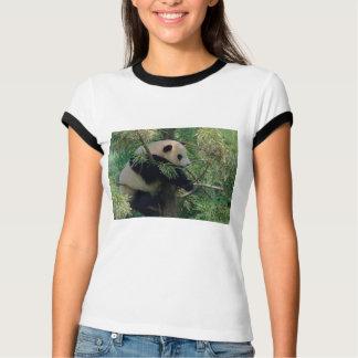 Oso de panda remeras