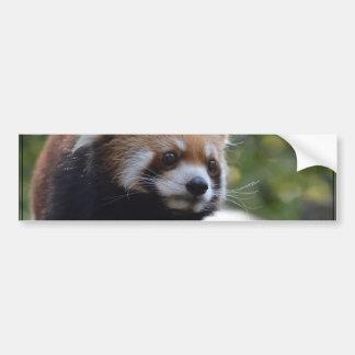 Oso de panda roja dulce pegatina para auto