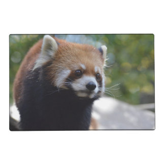 Oso de panda roja dulce salvamanteles