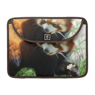 Oso de panda roja lindo 13 manga de MacBook Funda Macbook Pro