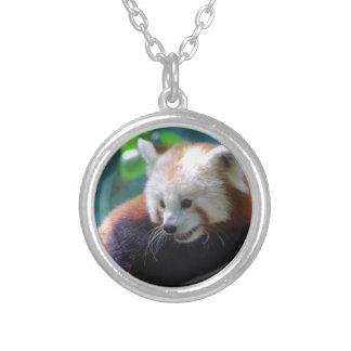 Oso de panda roja precioso joyerias personalizadas