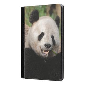 Oso de panda sonriente