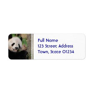 Oso de panda sonriente etiqueta de remite