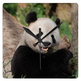 Oso de panda sonriente reloj cuadrado