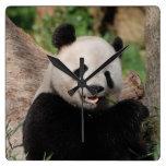 Oso de panda sonriente relojes de pared