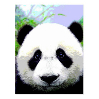 Oso de panda tarjeta postal