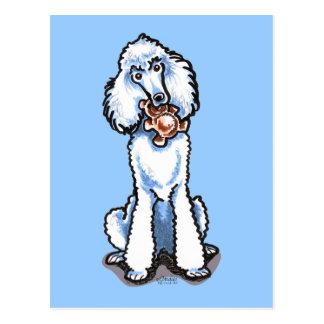 Oso de peluche blanco del caniche estándar tarjeta postal