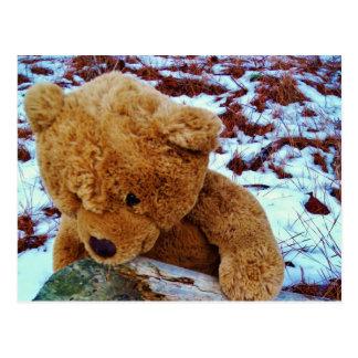 Oso de peluche en la nieve tarjeta postal