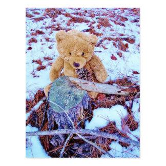 Oso de peluche en la nieve, tinte del azul del dri postal