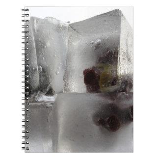 Oso de peluche notebook