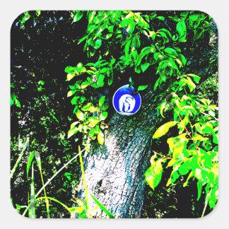 Oso en árbol calcomanias cuadradas
