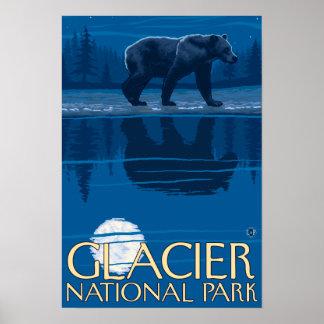 Oso en claro de luna - Parque Nacional Glacier, TA Póster