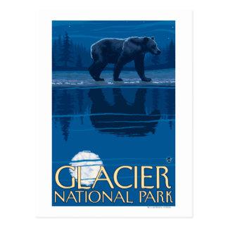 Oso en claro de luna - Parque Nacional Glacier, TA Postales