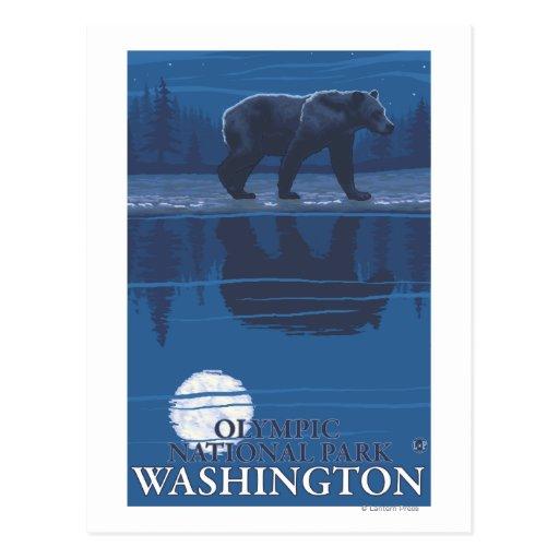 Oso en claro de luna - parque nacional olímpico, tarjetas postales