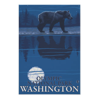 Oso en claro de luna - parque nacional olímpico, W Posters