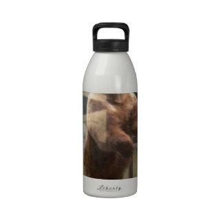 Oso grizzly botella de beber