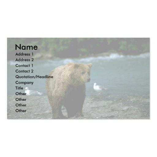 Oso grizzly al lado del río del desierto plantillas de tarjetas personales