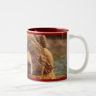 Oso grizzly amistoso tazas de café