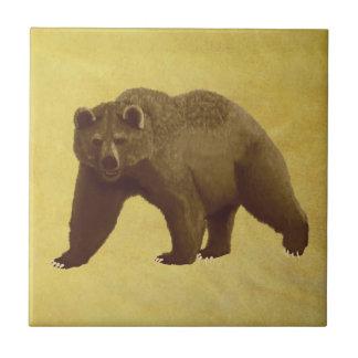 Oso grizzly azulejo cuadrado pequeño