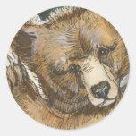 Oso grizzly Cub y tocón de árbol Pegatina