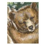 Oso grizzly Cub y tocón de árbol Postal