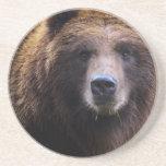 Oso grizzly de Brown Posavasos Para Bebidas