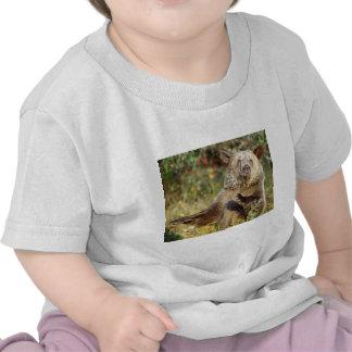 Oso grizzly del baile camiseta