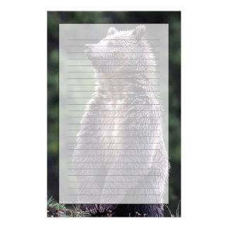 Oso grizzly derecho personalized stationery