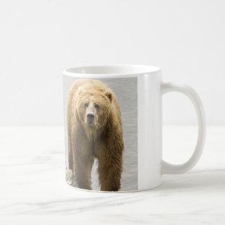 Oso grizzly en agua en el refugio del Kodiak Tazas