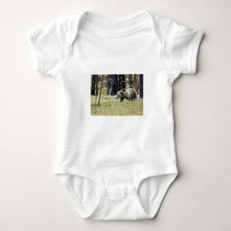 Oso grizzly en campo en el parque nacional de body para bebé