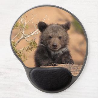 Oso grizzly horribilis de los arctos del Ursus Alfombrilla De Ratón Con Gel