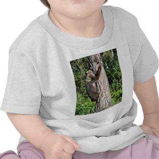 Oso grizzly joven en un árbol camiseta