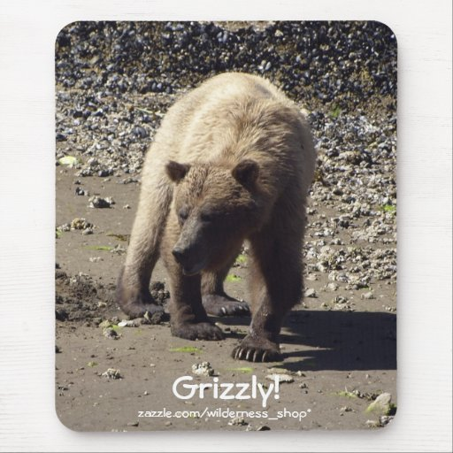 Oso grizzly Mousepad