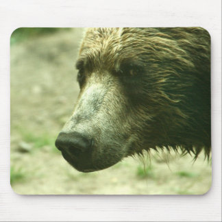 Oso grizzly Mousepad Tapete De Ratones