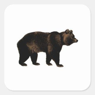 Oso grizzly colcomanias cuadradas