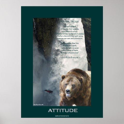 Oso grizzly, poster de color salmón de la ACTITUD