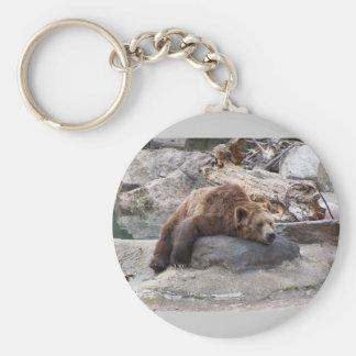 Oso grizzly que descansa sobre roca llavero redondo tipo pin