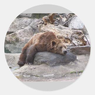 Oso grizzly que descansa sobre roca etiqueta redonda